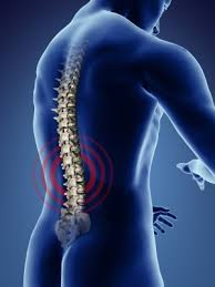 acupuncture for low back pain forest hill st clair west toronto