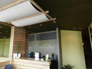 acupuncture and massage therapy forest hill toronto