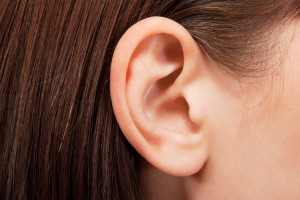 ear acupuncture auricular therapy ear seeds st clair west forest hill toronto